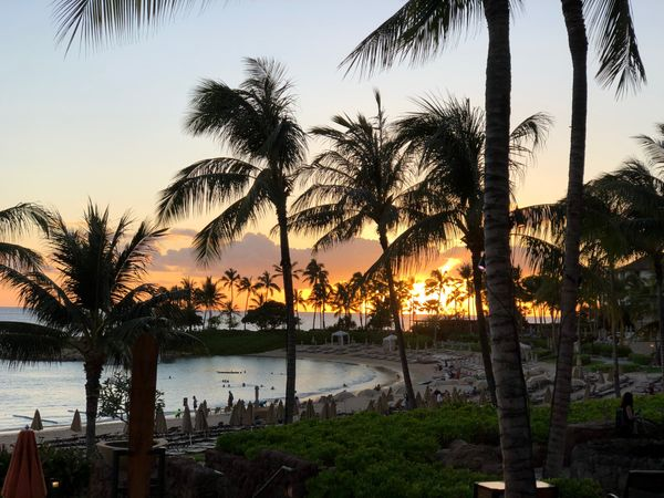 What I wish I knew going to Disney's Aulani Resort for the First Time